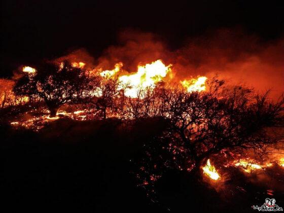 Incendios Córdoba 6