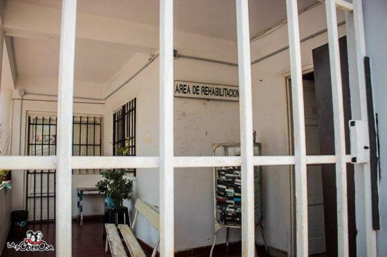Salud mental, Córdoba, Neuro
